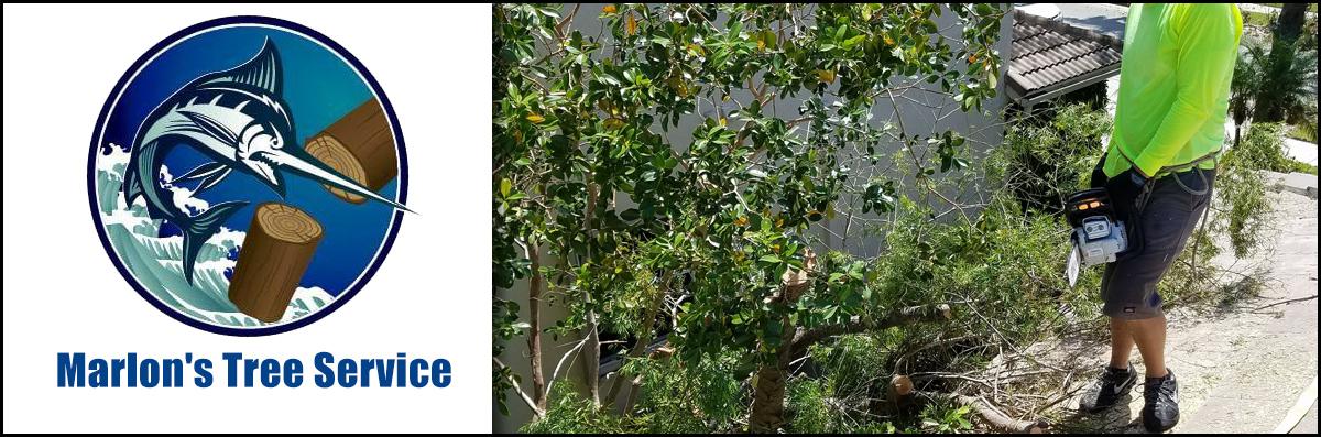 Marlon's Tree Service is a Tree Company in Pembroke Pines, FL