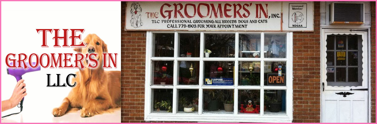 The Groomer's In LLC is a Pet Grooming Salon in Maple Shade Township, NJ
