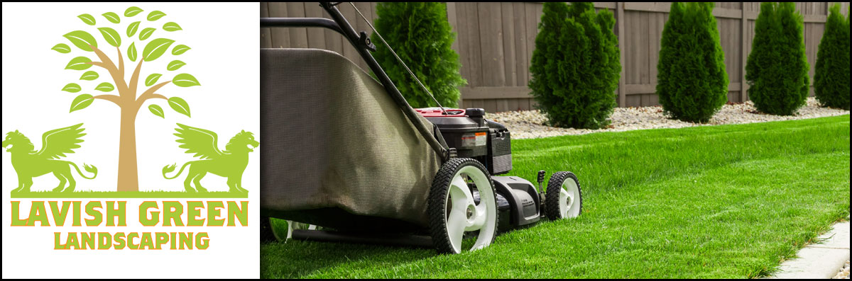 Lavish Green Landscaping is a Landscaping Company in Houston, TX