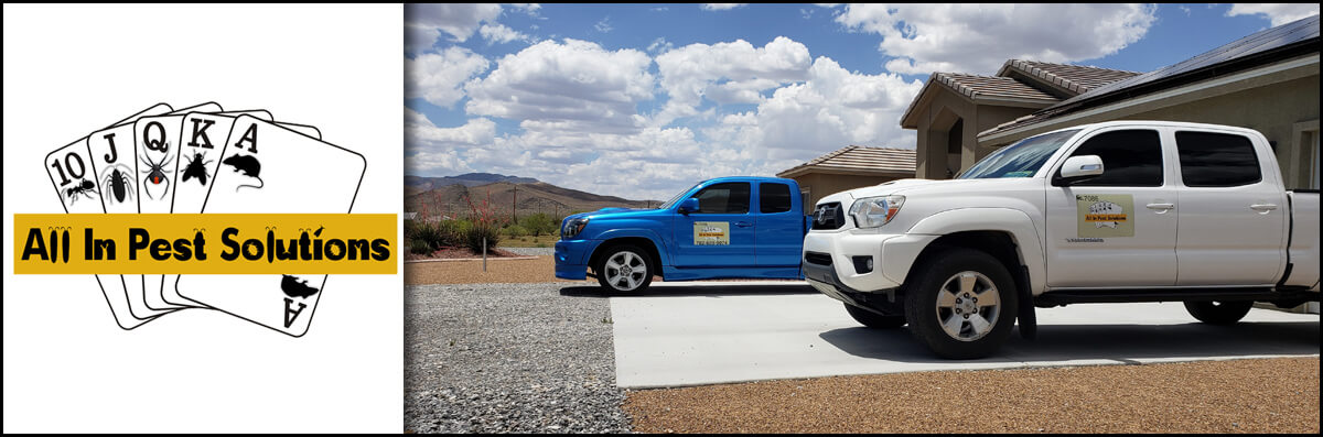 All In Pest Solutions is a Pest Control Company in Pahrump, NV